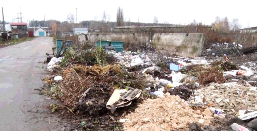 Мешканці 4-го Селецького провулку страждають від сміття