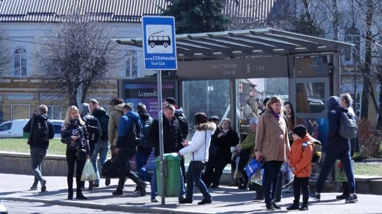 Яку вартість проїзду слід очікувати в житомирських маршрутках найближчим часом?