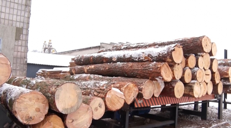 Лісопромисловий комплекс в Баранівському районі за рік вдвічі збільшив виробництво