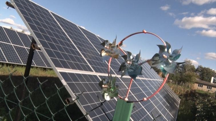 Велика домашня сонячна станція працює в селі Громада Любарського району