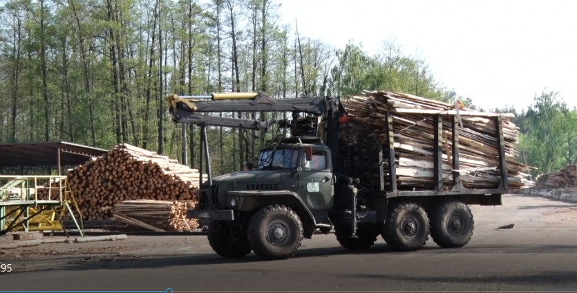 Акції зупинки навантажених лісовозів у Радомишлі заважають роботі місцевого лісомисливського господарства