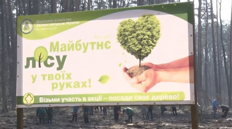 У Зарічанському військовому лісництві висадили 1 га лісу