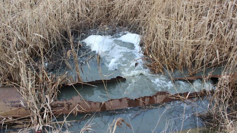 В Генпрокуратуру напишуть, що у Бердичеві стоки ллють в річку