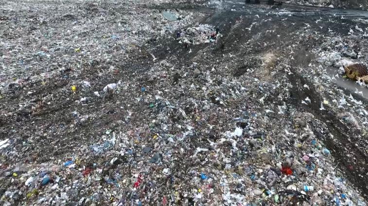 Сортування сміття: допомога довкіллю та заробіток
