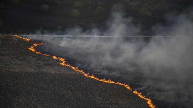 Пожежа поблизу «рудого лісу» здоров'ю житомирян не шкодить