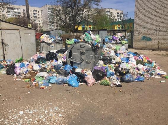 Житомиряни скаржаться, що комунальники вчасно не вивозять сміття