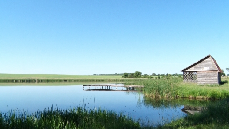 Робоча група Житомирської райради інспектувала озеро в Сінгурах