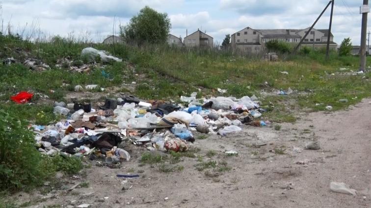 Житомиряни скаржаться на незадовільний санітарний стан вулиць