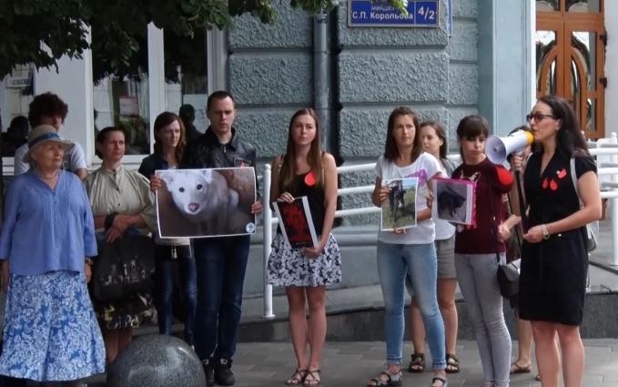 Під стінами Житомирської міської ради зібрались десятки зоозахисників