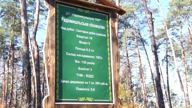 Німецька делегація завітала до лісівників Житомирщини