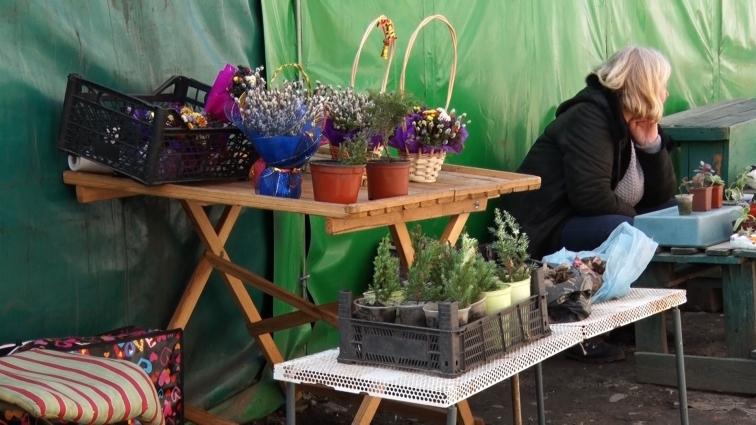 У Житомирі погодили сезонну торгівлю живими квітами