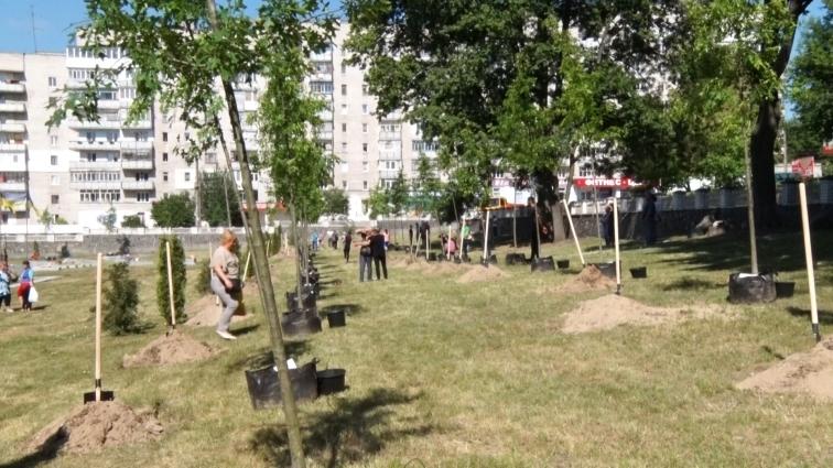 На Смолянському кладовищі висадили 53 дуби