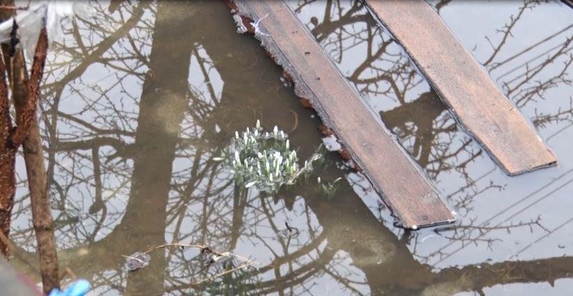 У Житомирі вода затопила двори і будинки приватного сектору