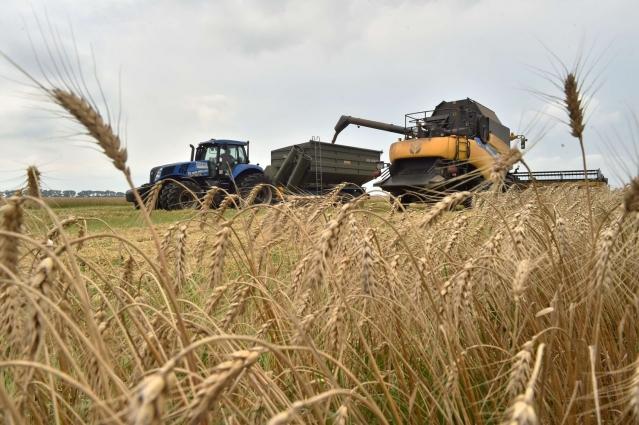 Земельну проблему селян вивчатимуть обласні чиновники
